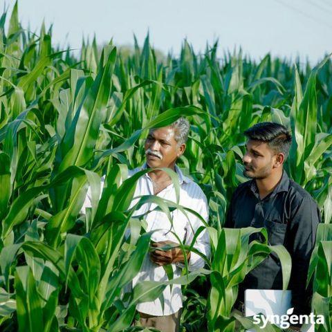 Die Welt ernähren mit Innovation und Verantwortung - Syngenta begrüsst Dialog statt Konfrontation (Photo: Business Wire)