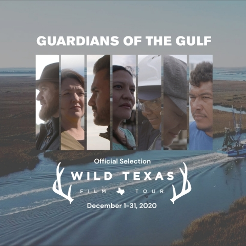 Guardians of the Gulf, produced by Mary Kay Inc., will screen online for free during the month of December as part of the Wild Texas Film Tour. (Graphic: Mary Kay Inc.)