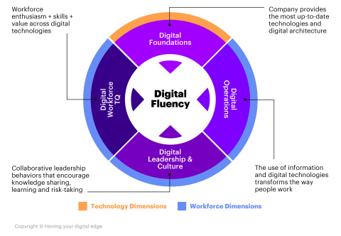 Digital Fluency Infographic (Graphic: Business Wire)