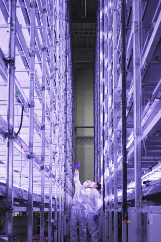 YesHealth Group and Nordic Harvest complete first phase of construction on Europe's largest vertical farm. The new vertical farm stands 14-stories high in a 7000 sq. meter facility at Copenhagen Markets, on the outskirts of Denmark's capital. (Photo: Business Wire)
