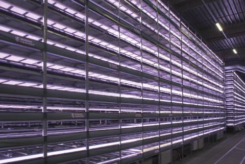 Le groupe YesHealth Group et Nordic Harvest achèvent la construction de la première phase de la plus grande ferme verticale d'Europe. Située à Copenhagen Markets, dans la banlieue de la capitale danoise, la nouvelle ferme verticale fait 14 étages de haut, avec une superficie de 7000 pieds carrés. (Photo : Business Wire)