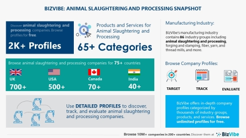 Snapshot of BizVibe's animal slaughtering and processing industry group and product categories (Graphic: Business Wire)