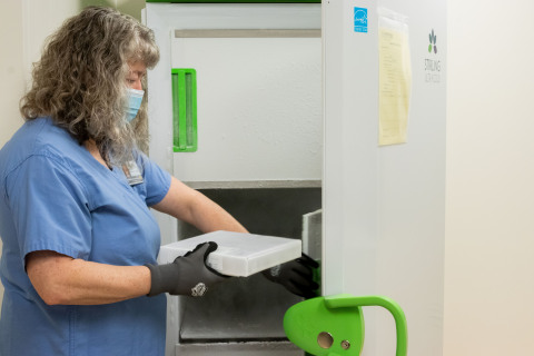 Michelle Vincent, Pharmacy Tech Lead at Seattle Cancer Care Alliance, stores initial doses of the COVID-19 vaccine. (Photo: Business Wire)