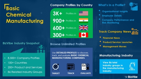 Snapshot of BizVibe's basic chemical manufacturing industry group and product categories. (Graphic: Business Wire).