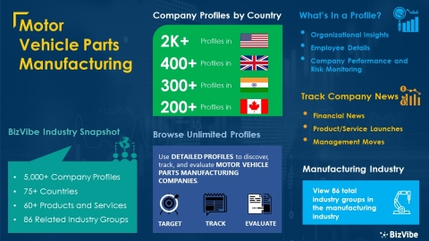 Snapshot of BizVibe's motor vehicle parts manufacturing industry group and product categories. (Graphic: Business Wire)