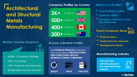 Snapshot of BizVibe's architectural and structural metals manufacturing industry group and product categories (Graphic: Business Wire)