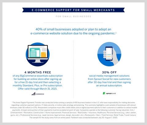 Support for U.S. Small Merchants' Growing Digital Presence (Graphic: Business Wire)