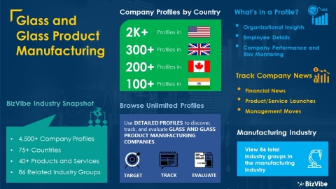 Snapshot of BizVibe's glass and glass product manufacturing industry group and product categories. (Graphic: Business Wire)