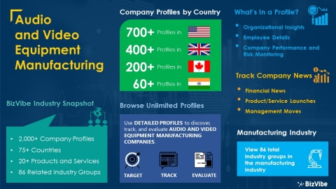 Snapshot of BizVibe's audio and video equipment manufacturing industry group and product categories. (Graphic: Business Wire)
