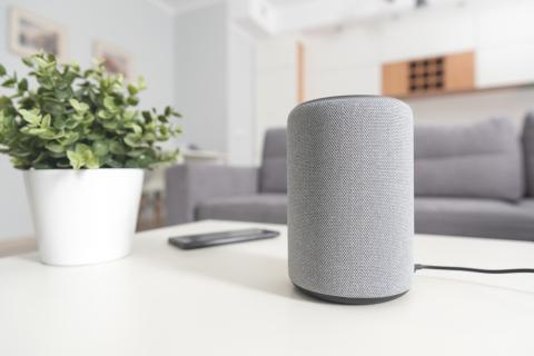 Sightloss SmartHome Speaker (Source: Shutterstock)