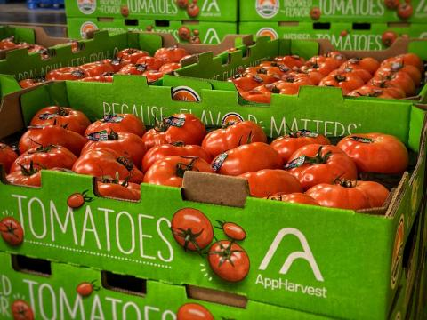 AppHarvest announces its first harvest of tomatoes from flagship high-tech indoor farm are shipping to select national grocery stores this week. The sustainably grown tomatoes first will be available in select national retailers such as Kroger, Publix, Walmart, Food City and Meijer. (Photo: Business Wire)