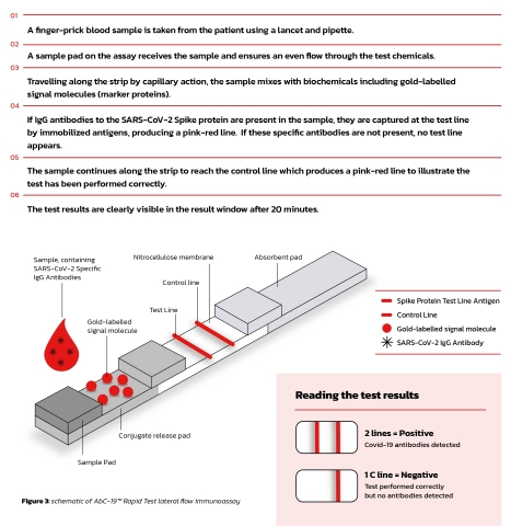 The AbC-19™ Rapid Test Process (Graphic: Business Wire)