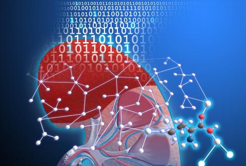 """numares nutzt """"metabolische Konstellationen"""": Eine Kombination von Biomarkern im Stoffwechsel,  bewertet durch KI, um die Nierenfunktion mittels Serum-basierten Test zu bewerten. (Graphic: Business Wire)"""