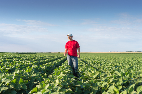Operation Weed Eradication: It's time to approach weeds differently. (Photo: Business Wire)