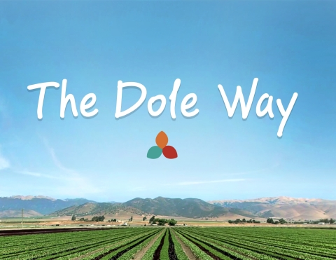 The Dole Way framework paves the way for further improvements in areas where Dole believes it can make the biggest positive impacts (Photo: Business Wire)