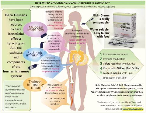 ニチグルカンは、粘膜免疫、適応免疫、自然免疫、訓練免疫の4つの経路すべてにおいて作用する可能性があることが報告されています。現在のCovid-19、その変異体、そして将来のパンデミックに備え、ヒトの免疫力を高めるために、この新しいβグルカンの研究が不可欠であると言えます。 (画像:ビジネスワイヤ)