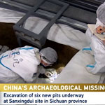 CGTN: Gold Leaves Extracted From Sanxingdui, Some Preliminarily Repaired