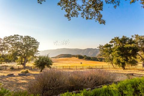 C4 Ranch (Photo: C4 Foundation)