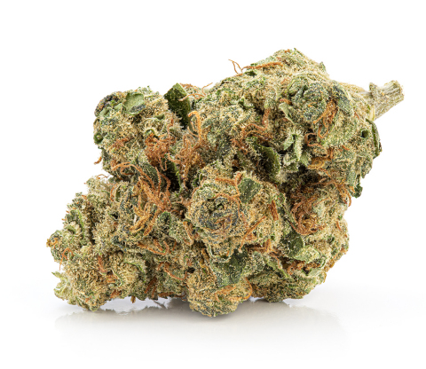Skyway Kush bud (Photo: Business Wire)