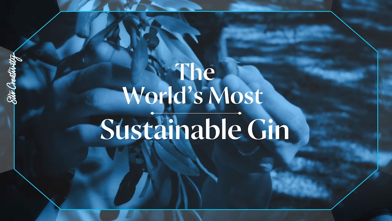 BOMBAY SAPPHIRE is the first major brand to have all 10 of its botanical ingredients on track to be 100% sustainably-sourced and certified by the end of 2021. This news is a major step towards Bacardi, the largest privately-held spirits company in the world, that owns the gin brand, achieving its 2025 goal of sourcing 100% of its key ingredients from sustainably certified suppliers.