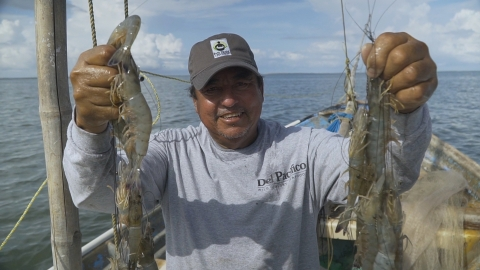WFM Sourced for Good Shrimp Fisherman. (Photo: Business Wire)