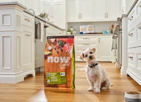 Petcurean Announces Global Brand Refresh of NOW FRESH Collection for Cats and Dogs (Photo: NOW FRESH)