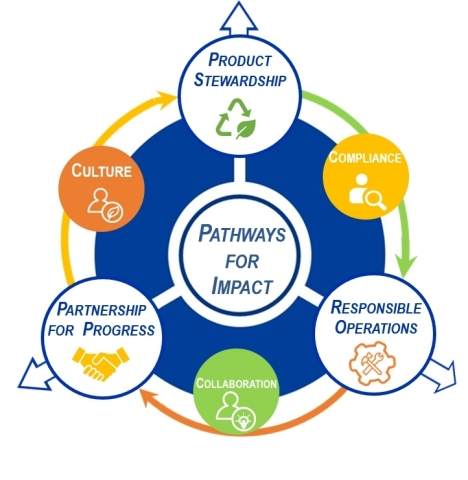 Pathways For Impact (Graphic: Business Wire)