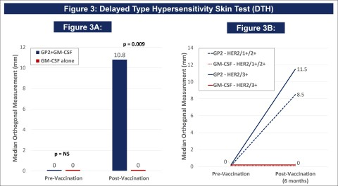 Figure 3 from Poster Presentation CT183 from 2021 AACR Annual Meeting DTH Skin Test: The DTH skin test measures the diameter of the skin immune response to GP2 in millimeters, 48-72 hours after intradermal injection of GP2 without GM-CSF. Figure 3A shows that after completion of the 6th immunization after 6 months, GP2 treated patients showed a robust immune response using the DTH skin test, while the placebo did not (p = 0.009). The change from baseline in DTH at 6 months was more robust in the GP2 treated patients. Figure 3B shows that the DTH immune response for GP2 treated patients was similarly robust in HER2 3+ patients and HER2 1-2+ patients, independent of prior trastuzumab treatment and HER2 expression levels. Thus, GP2's robust immune response in the HER2 1-2+ population suggests the potential to apply GP2 immunotherapy to HER2 low to intermediate expressing breast cancers, as well as to other HER2 1-3+ expressing cancers. (Graphic: Business Wire)