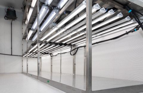 Horticultural lighting with SunLike LED in agriculture laboratories of IRSTEA (Photo: Business Wire)