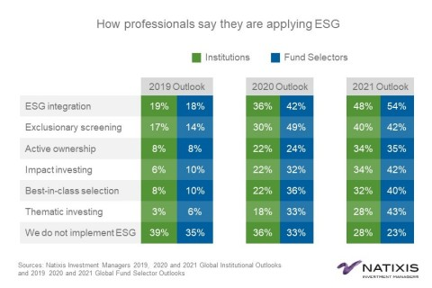 How professionals say they are applying ESG (Graphic: Business Wire)