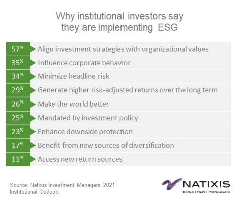 Why institutional investors say they are implementing ESG (Graphic: Business Wire)