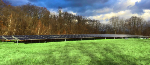 Solar panels near Monsignor Bojnowski Manor at Daughters of Mary campus. (Photo: Business Wire)