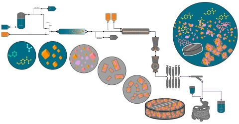 gPROMS FormulatedProducts 2.0 is a mechanistic model-based environment for integrated digital design of robust formulated products and their manufacturing processes, and related digital process operation. It is used in the pharmaceuticals, food & beverage and FMCG sectors for active ingredient manufacture, formulation manufacture, product performance and bioprocessing. (Graphic: Business Wire)