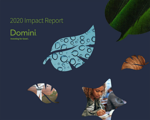 Domini Impact Investments LLC, a women-led impact investment firm, publishes its 2020 Impact Report highlighting how investors came together to harness the power of finance to build a better world—despite the world 2020 delivered. (Graphic: Business Wire)