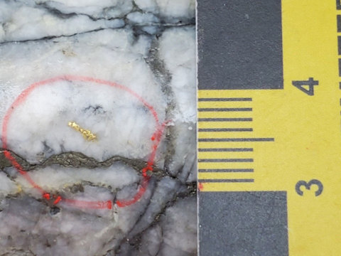 Visible Gold from MH-21-165 at 80 m (Footwall Splay) – the scale shows 1 cm (from 3-4) (Photo: Business Wire)