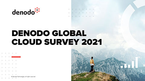 Denodo Global Cloud Survey in Charts