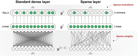 Numenta's sparse network utilizes highly sparse weights and activations, like in the neocortex. Their sparse-sparse techniques allow for extreme activation sparsity while maintaining model accuracy. (Graphic: Business Wire)