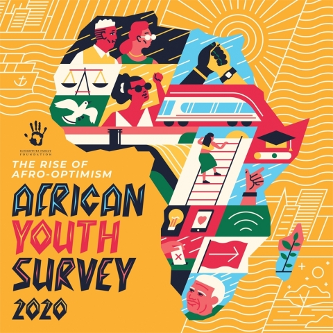African Youth Survey (AYS) 2020 (Graphic: Business Wire)