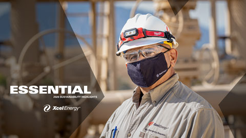 Xcel Energy Sustainability Report Highlights