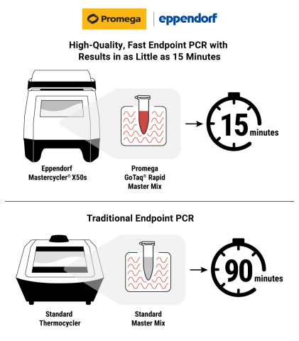 Promega GoTaq® Rapid Master Mix paired with the Eppendorf Mastercycler® X50s thermal cycler enables labs performing endpoint polymerase chain reaction (PCR) to amplify samples in as little as 15 minutes. (Graphic: Business Wire)