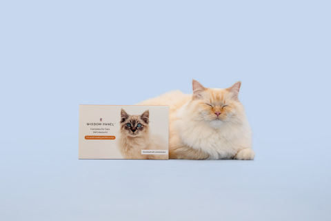 Wisdom Health Genetics, the world's leader in pet genetics and makers of the Wisdom Panel™ dog DNA test, has announced today the launch of Wisdom Panel™ Complete for Cats. (Photo: Business Wire)