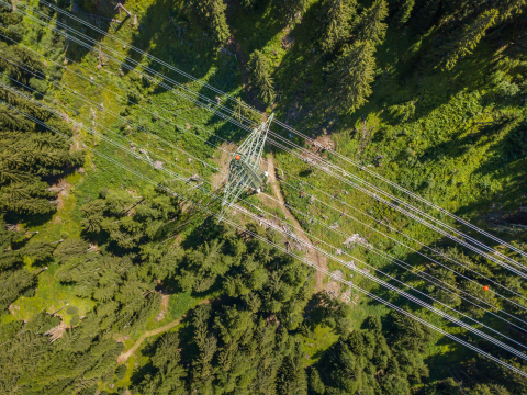 LiveEO is monitoring overhead lines for exposure to vegetation using satellite data. (Photo: Business Wire)