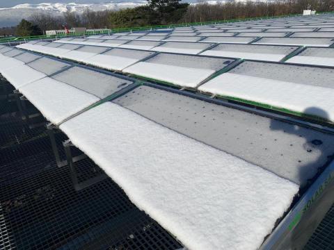 Même enrobés de neige, les panneaux TVP Solar fournissent au-delà de 80°C at battent les cibles énergétiques des SIG à Genève (CH) (Photo: TVP Solar)