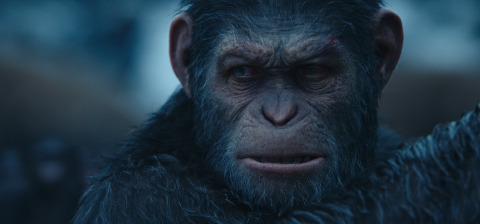 《猩球崛起》,©二十世纪福克斯影片公司2017年版权所有(照片:美国商业资讯)