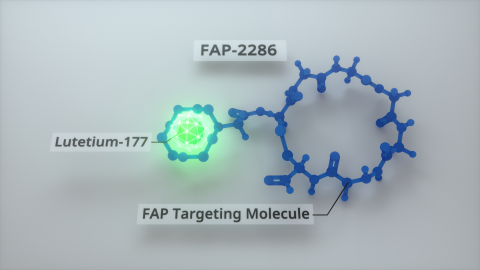 Clovis Oncology is exploring FAP-2286 linked to Lutetium-177 as a therapeutic agent (Graphic: Business Wire)
