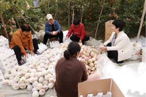 Women entrepreneurs in Dangshan County in eastern China's Anhui Province were able to expand their fruit business with loans from MYbank. (Photo: Business Wire)