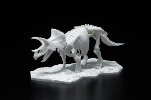 Dinosaur Skeleton Plastic Model Triceratops (Photo: Business Wire)