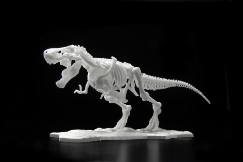Dinosaur Skeleton Plastic Model Tyrannosaurus (Photo: Business Wire)
