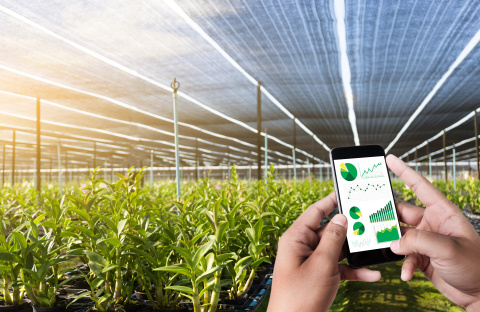 With the program's ninth cohort, the Wells Fargo Innovation Incubator is validating technologies that make indoor agriculture more sustainable. (Photo: Donald Danforth Plant Science Center)