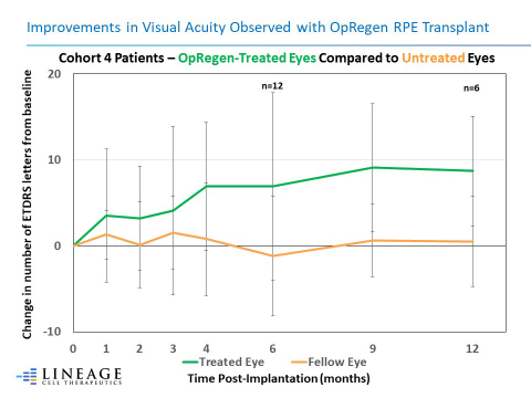 Improvements in Visual Acuity Observed with OpRegen RPE Transplant (Graphic: Business Wire)